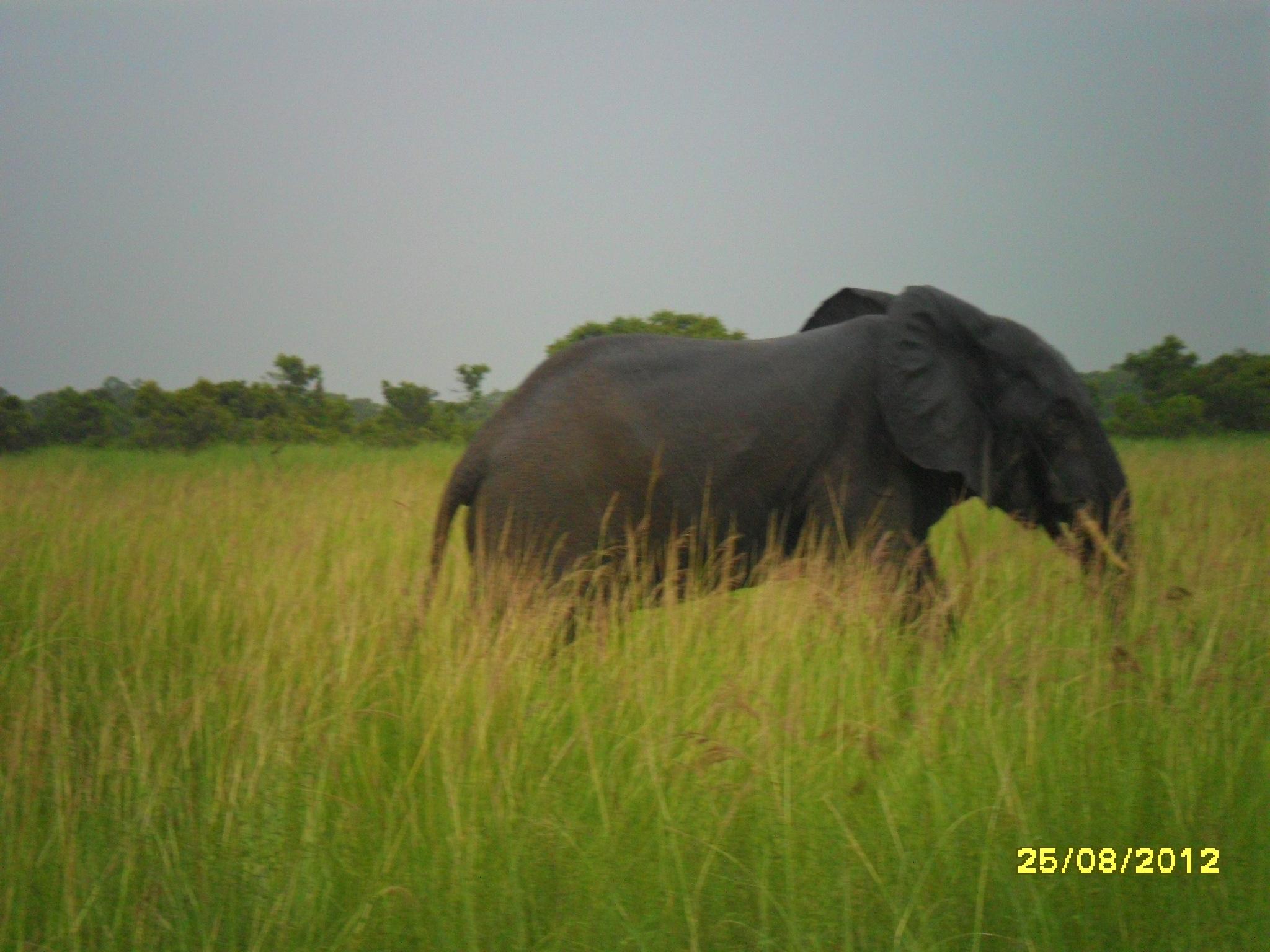 Benin 17.8. – 30.8.12